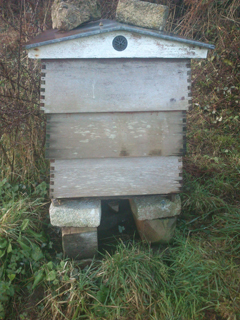 Rebuilt Warre hive, Dec 2014