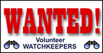 WANTED! panel for website