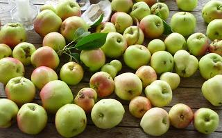 apple-crop