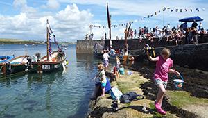 Fish Festival 2013