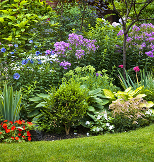 gardening08.15-2