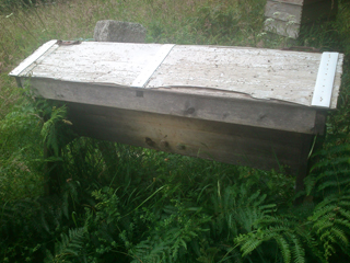 Bee-Mania-07.16-2